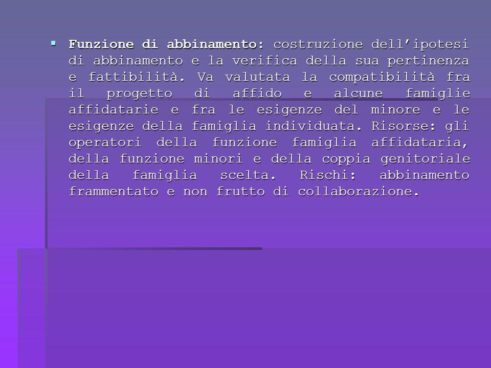 Funzione di abbinamento: costruzione dellipotesi di abbinamento e la verifica della sua pertinenza e fattibilità.