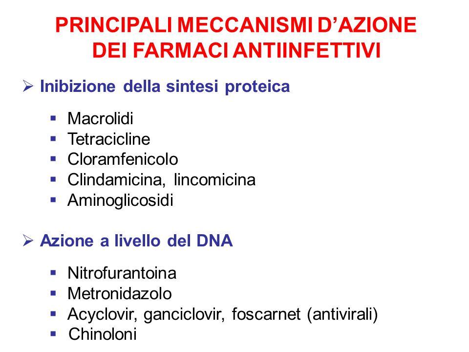 PRINCIPALI MECCANISMI DAZIONE DEI FARMACI ANTIINFETTIVI Inibizione della sintesi proteica Macrolidi Tetracicline Cloramfenicolo Clindamicina, lincomic
