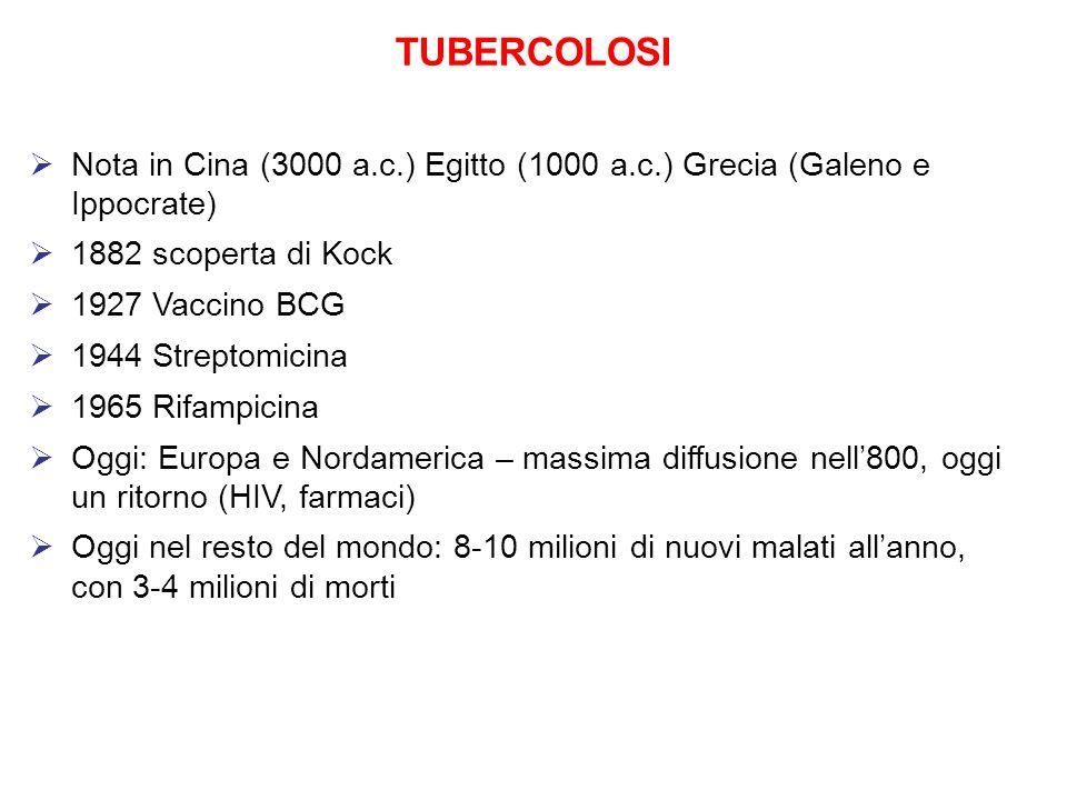 TUBERCOLOSI Nota in Cina (3000 a.c.) Egitto (1000 a.c.) Grecia (Galeno e Ippocrate) 1882 scoperta di Kock 1927 Vaccino BCG 1944 Streptomicina 1965 Rif