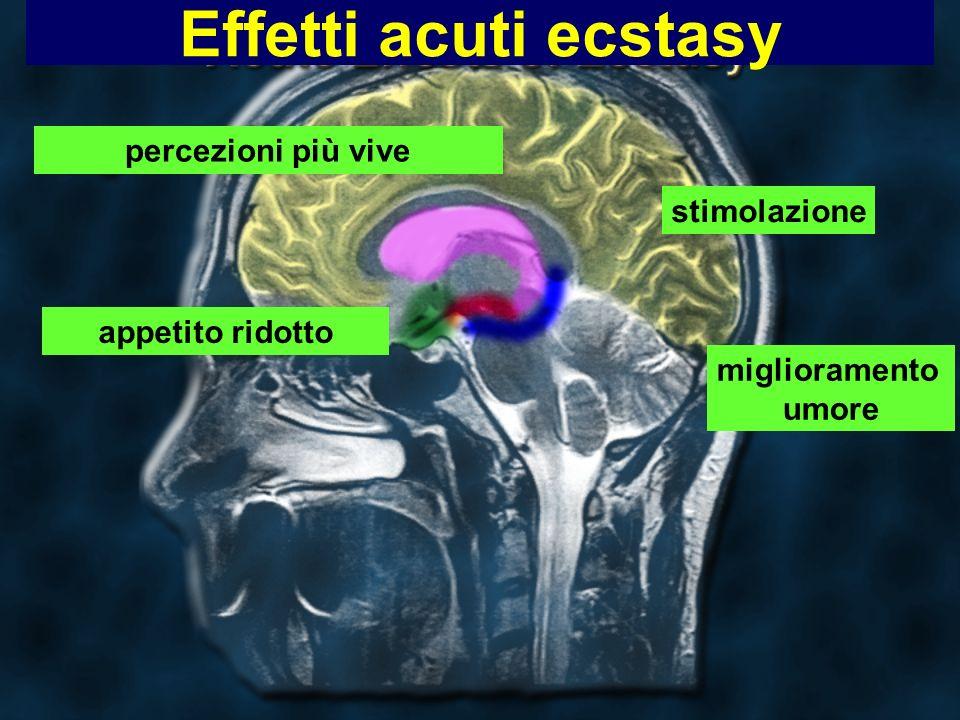 Effetti acuti ecstasy miglioramento umore percezioni più vive stimolazione appetito ridotto