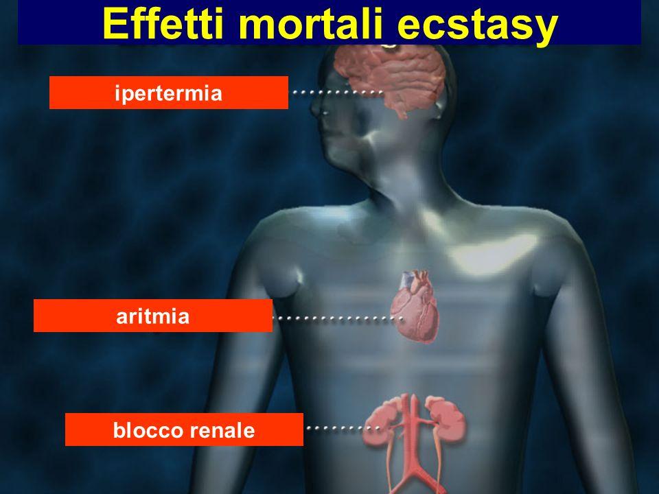 Effetti mortali ecstasy ipertermia aritmia blocco renale