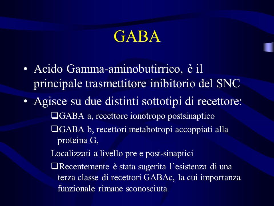 GABA Acido Gamma-aminobutirrico, è il principale trasmettitore inibitorio del SNC Agisce su due distinti sottotipi di recettore: GABA a, recettore ionotropo postsinaptico GABA b, recettori metabotropi accoppiati alla proteina G, Localizzati a livello pre e post-sinaptici Recentemente è stata sugerita lesistenza di una terza classe di recettori GABAc, la cui importanza funzionale rimane sconosciuta