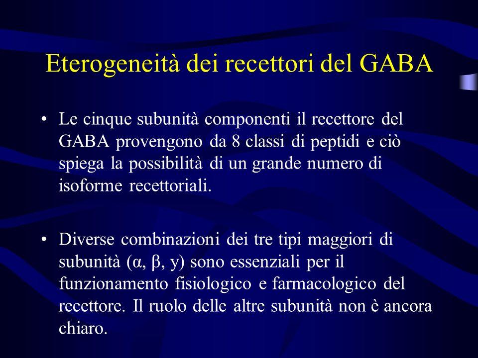 Eterogeneità dei recettori del GABA Le cinque subunità componenti il recettore del GABA provengono da 8 classi di peptidi e ciò spiega la possibilità di un grande numero di isoforme recettoriali.