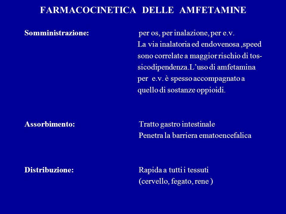 FARMACOCINETICA DELLE AMFETAMINE Somministrazione:per os, per inalazione, per e.v.