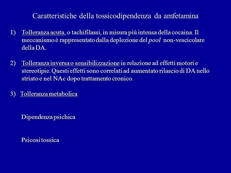 Caratteristiche della tossicodipendenza da amfetamina 1)Tolleranza acuta, o tachifilassi, in misura più intensa della cocaina.
