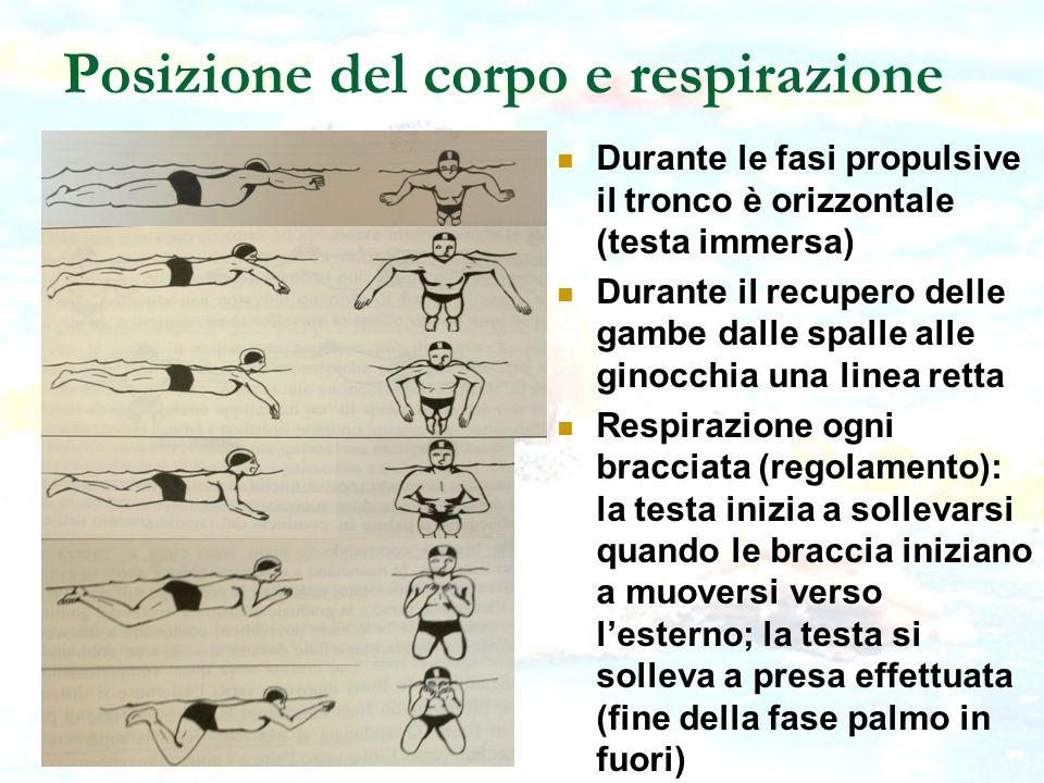 Posizione del corpo e respirazione Durante le fasi propulsive il tronco è orizzontale (testa immersa) Durante il recupero delle gambe dalle spalle all