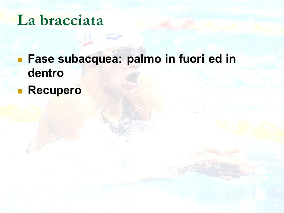 La bracciata Fase subacquea: palmo in fuori ed in dentro Recupero