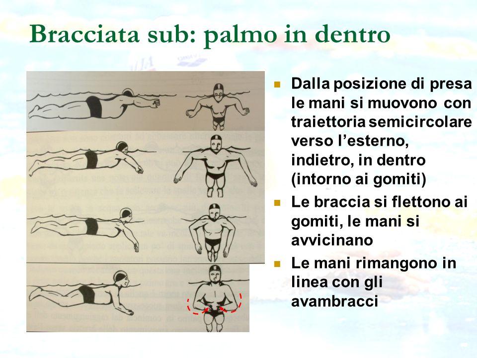 Bracciata sub: palmo in dentro Dalla posizione di presa le mani si muovono con traiettoria semicircolare verso lesterno, indietro, in dentro (intorno
