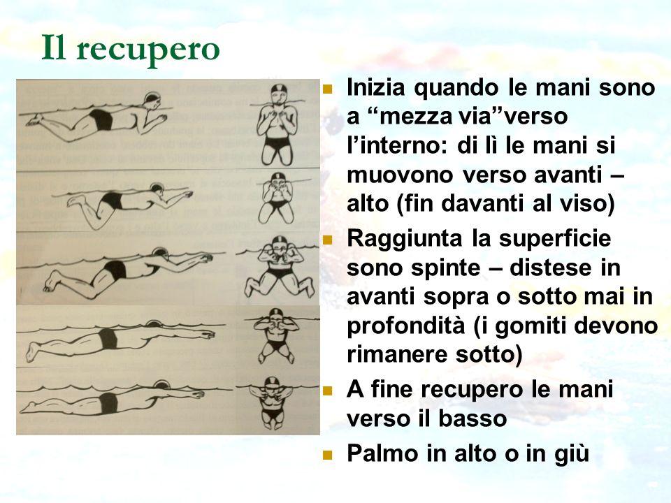 Il recupero Inizia quando le mani sono a mezza viaverso linterno: di lì le mani si muovono verso avanti – alto (fin davanti al viso) Raggiunta la supe