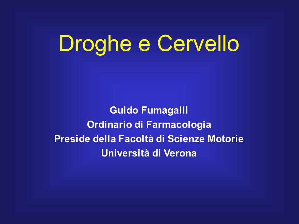 Droghe e Cervello Guido Fumagalli Ordinario di Farmacologia Preside della Facoltà di Scienze Motorie Università di Verona