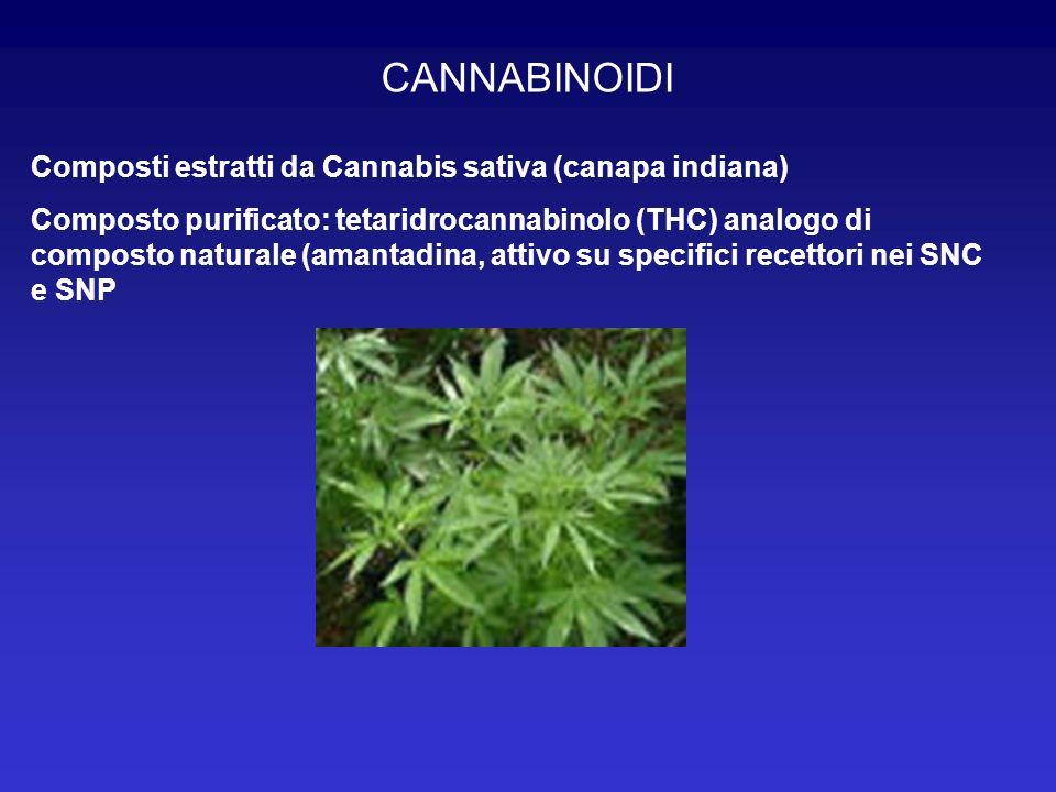 CANNABINOIDI Composti estratti da Cannabis sativa (canapa indiana) Composto purificato: tetaridrocannabinolo (THC) analogo di composto naturale (amant