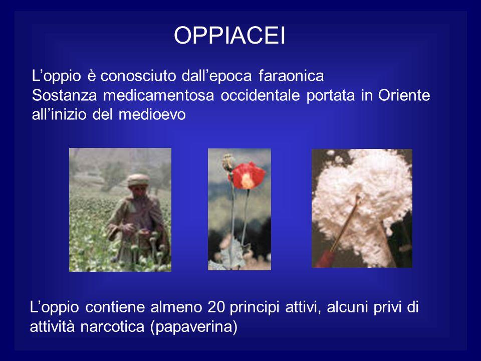 OPPIACEI Loppio è conosciuto dallepoca faraonica Sostanza medicamentosa occidentale portata in Oriente allinizio del medioevo Loppio contiene almeno 2