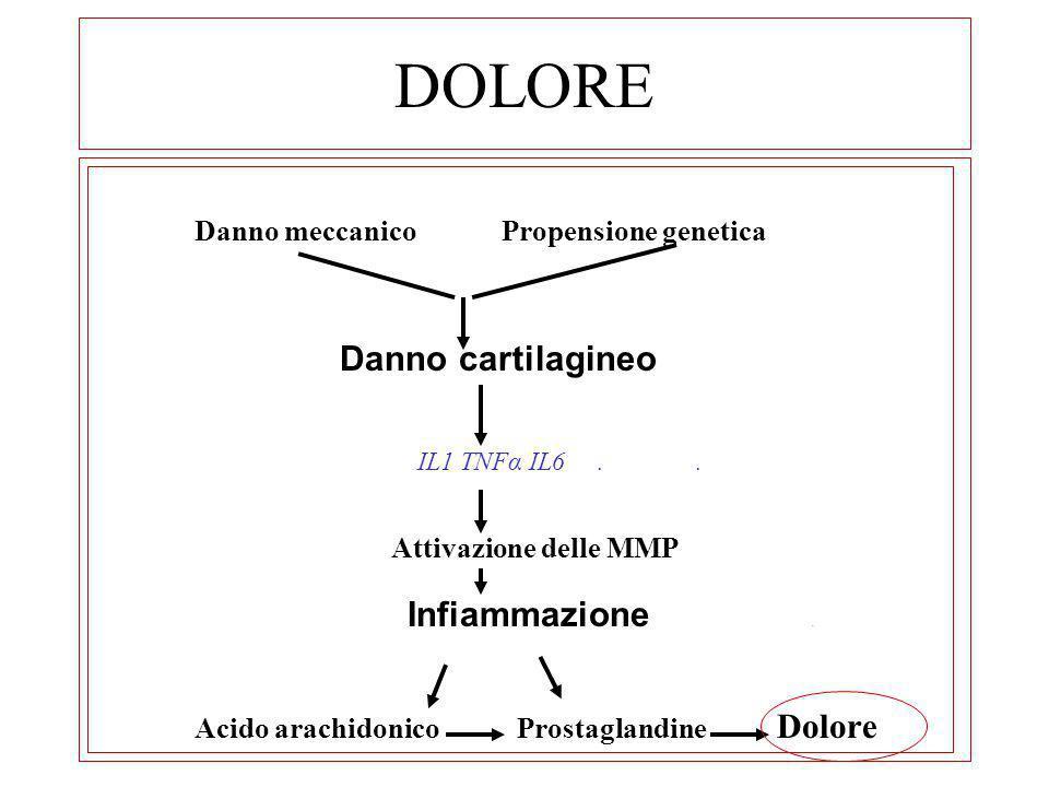 DOLORE Danno meccanico Propensione genetica Danno cartilagineo IL1 TNFα IL6.. Attivazione delle MMP Infiammazione. Acido arachidonico Prostaglandine D