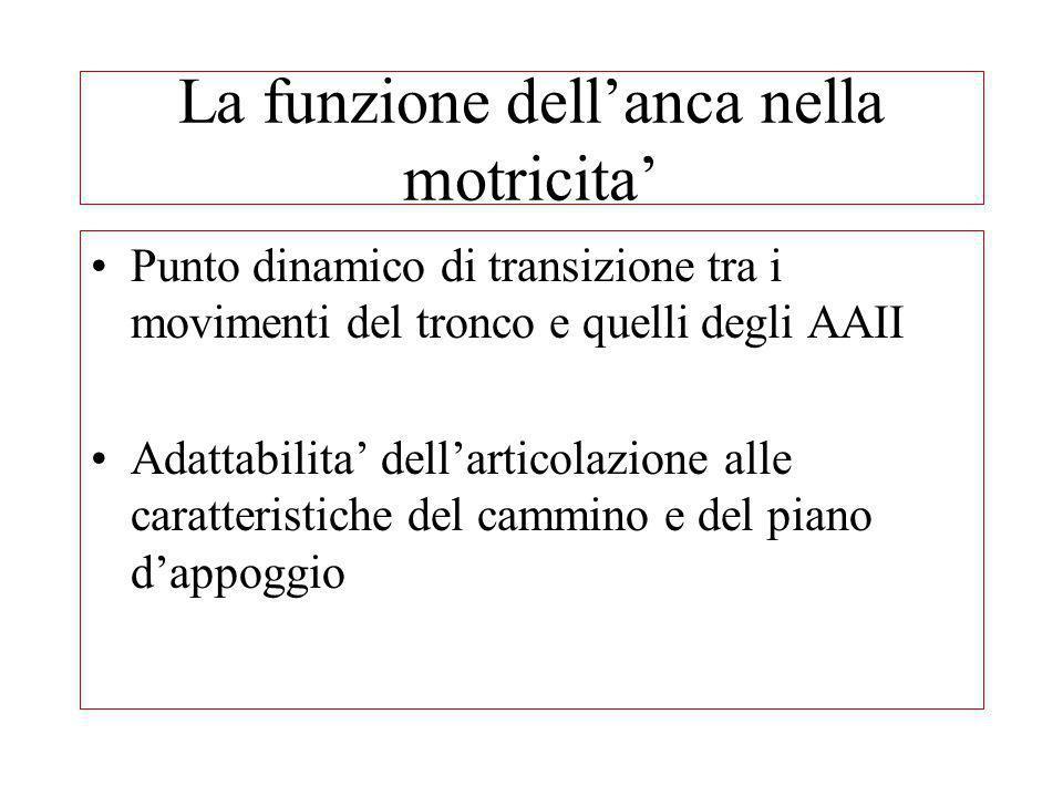 La funzione dellanca nella motricita Punto dinamico di transizione tra i movimenti del tronco e quelli degli AAII Adattabilita dellarticolazione alle