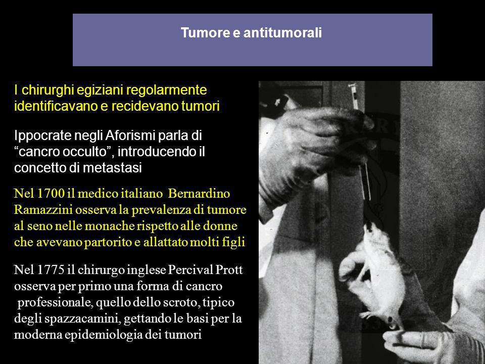 Tumore e antitumorali Ippocrate negli Aforismi parla di cancro occulto, introducendo il concetto di metastasi I chirurghi egiziani regolarmente identi