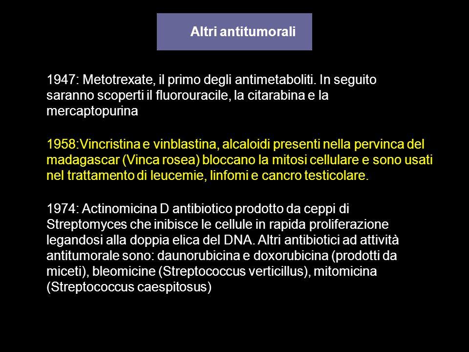 Altri antitumorali 1958:Vincristina e vinblastina, alcaloidi presenti nella pervinca del madagascar (Vinca rosea) bloccano la mitosi cellulare e sono