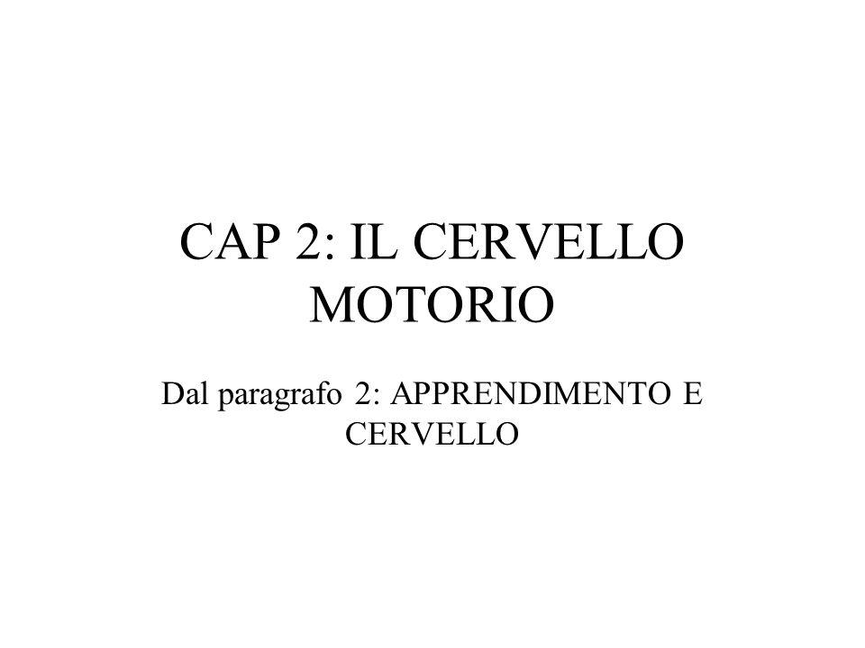 CAP 2: IL CERVELLO MOTORIO Dal paragrafo 2: APPRENDIMENTO E CERVELLO