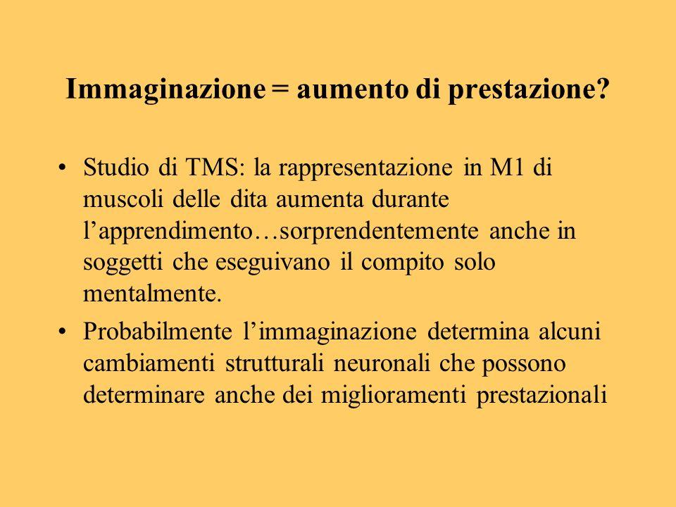 Immaginazione = aumento di prestazione? Studio di TMS: la rappresentazione in M1 di muscoli delle dita aumenta durante lapprendimento…sorprendentement