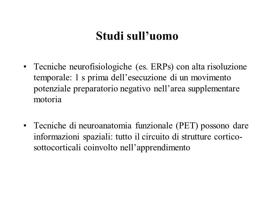 Studi sulluomo Tecniche neurofisiologiche (es. ERPs) con alta risoluzione temporale: 1 s prima dellesecuzione di un movimento potenziale preparatorio