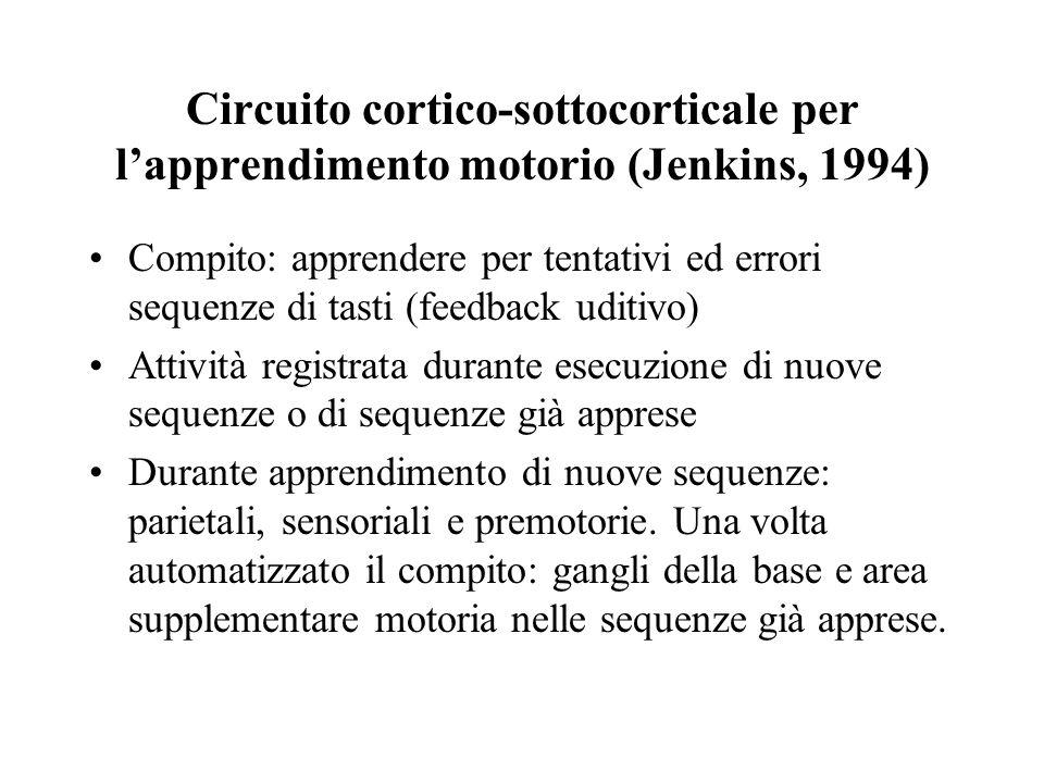 Circuito cortico-sottocorticale per lapprendimento motorio (Jenkins, 1994) Compito: apprendere per tentativi ed errori sequenze di tasti (feedback udi