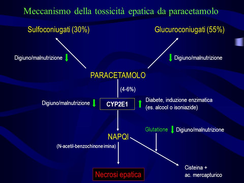 PARACETAMOLO Sulfoconiugati (30%)Glucuroconiugati (55%) Glutatione Cisteina + ac. mercapturico Digiuno/malnutrizione Diabete, induzione enzimatica (es