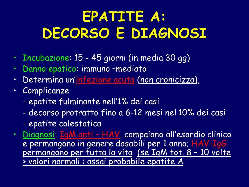 EPATITE A: DECORSO E DIAGNOSI Incubazione: 15 - 45 giorni (in media 30 gg) Danno epatico: immuno –mediato Determina uninfezione acuta (non cronicizza)