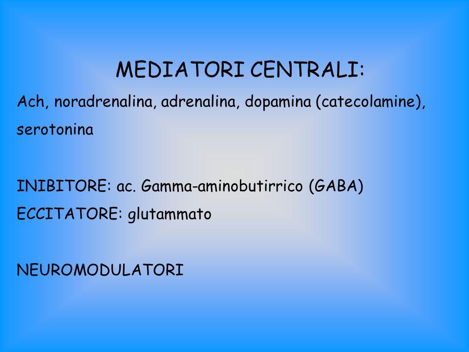 MEDIATORI CENTRALI: Ach, noradrenalina, adrenalina, dopamina (catecolamine), serotonina INIBITORE: ac. Gamma-aminobutirrico (GABA) ECCITATORE: glutamm