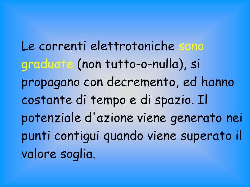 Le correnti elettrotoniche sono graduate (non tutto-o-nulla), si propagano con decremento, ed hanno costante di tempo e di spazio. Il potenziale d'azi