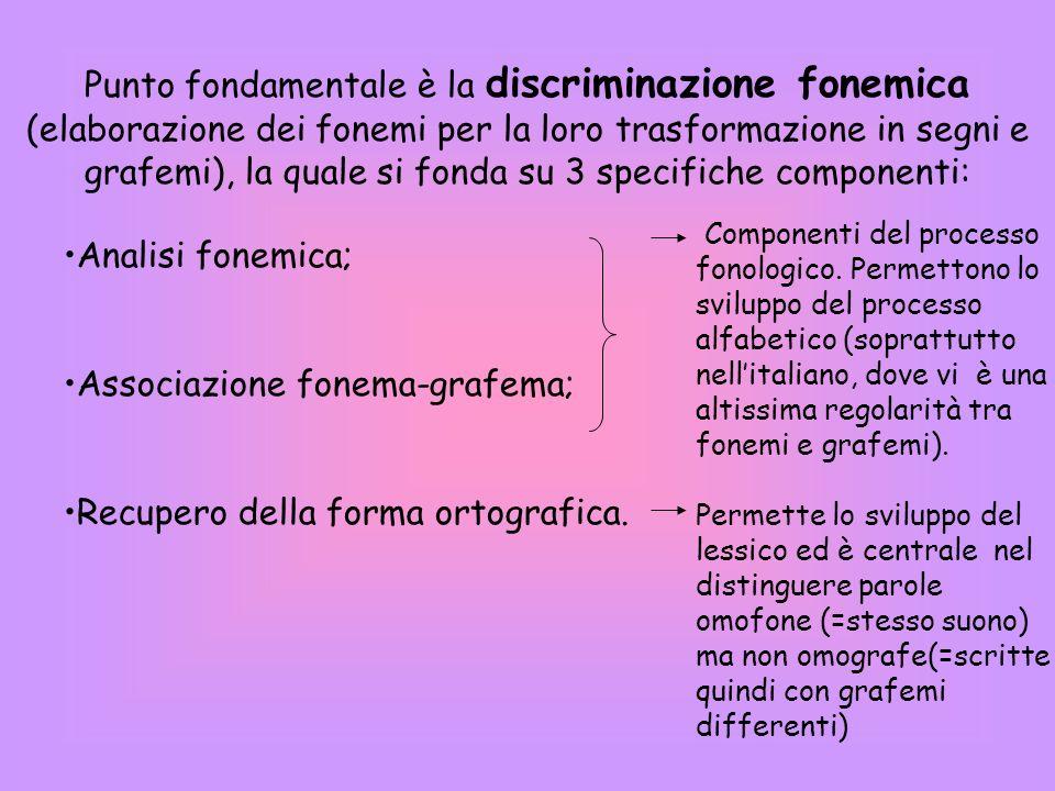 Punto fondamentale è la discriminazione fonemica (elaborazione dei fonemi per la loro trasformazione in segni e grafemi), la quale si fonda su 3 specifiche componenti: Analisi fonemica; Associazione fonema-grafema; Recupero della forma ortografica.