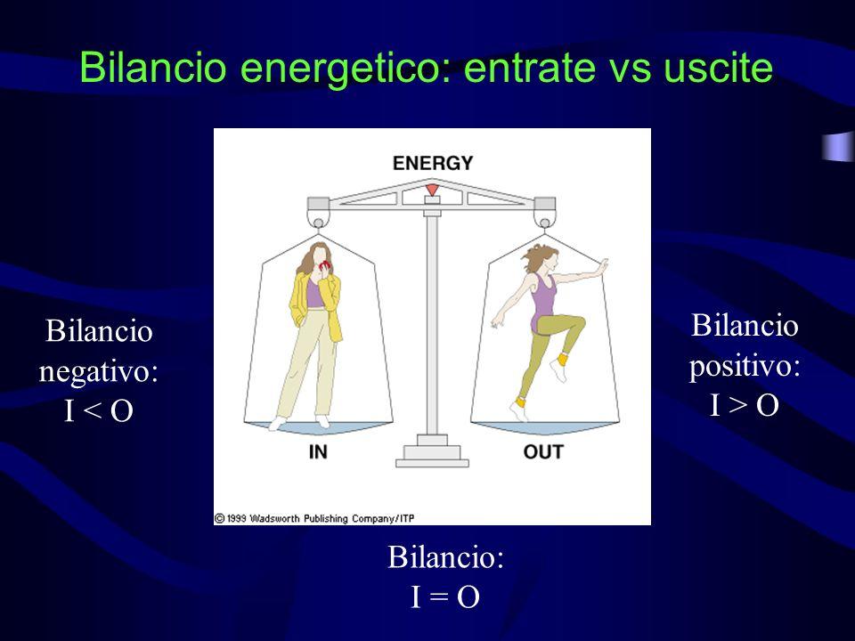 Bilancio energetico: entrate vs uscite Bilancio: I = O Bilancio negativo: I < O Bilancio positivo: I > O