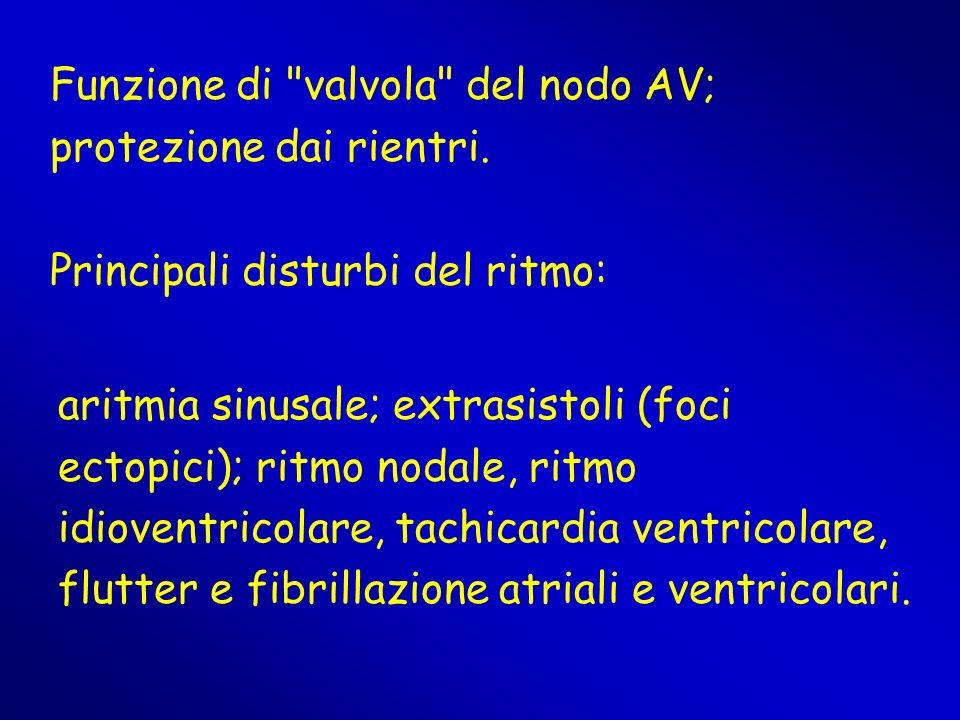 aritmia sinusale; extrasistoli (foci ectopici); ritmo nodale, ritmo idioventricolare, tachicardia ventricolare, flutter e fibrillazione atriali e vent
