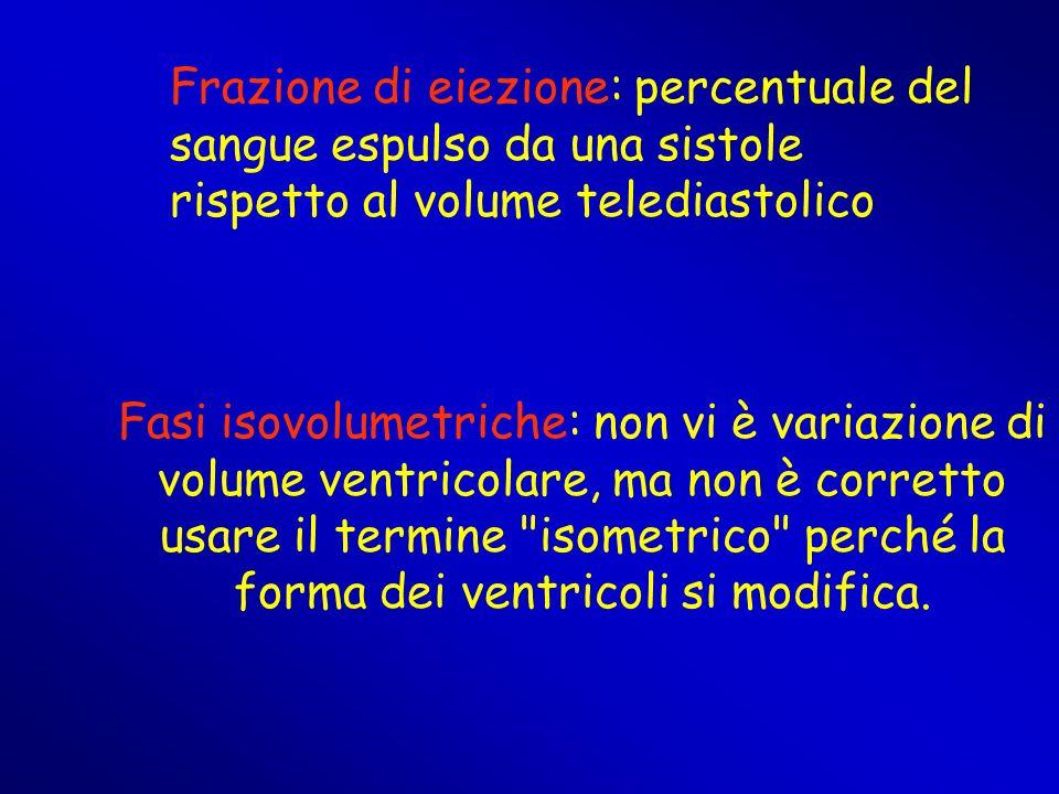 Fasi isovolumetriche: non vi è variazione di volume ventricolare, ma non è corretto usare il termine