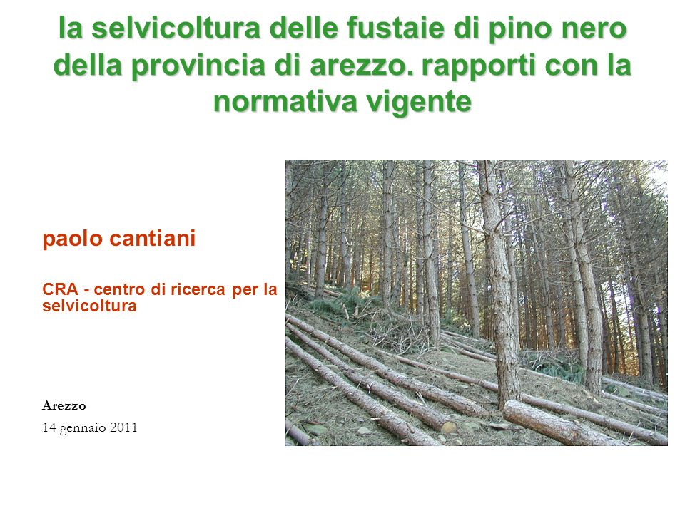 la selvicoltura delle fustaie di pino nero della provincia di arezzo. rapporti con la normativa vigente paolo cantiani CRA - centro di ricerca per la