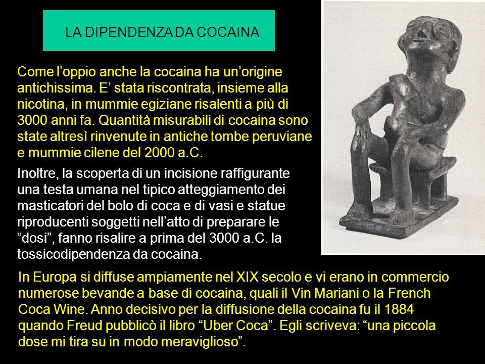 Come loppio anche la cocaina ha unorigine antichissima. E stata riscontrata, insieme alla nicotina, in mummie egiziane risalenti a più di 3000 anni fa