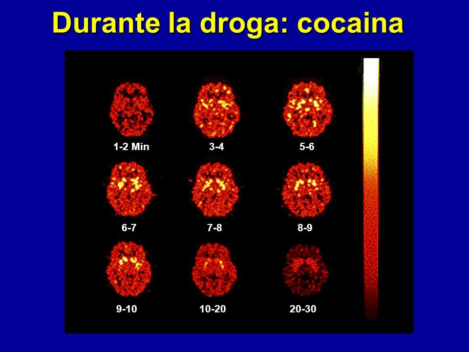 Durante la droga: cocaina 1-2 Min3-45-6 6-77-88-9 9-1010-2020-30