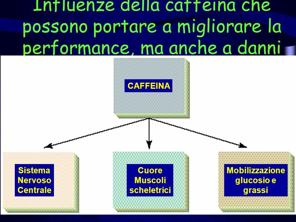 Influenze della caffeina che possono portare a migliorare la performance, ma anche a danni CAFFEINA Sistema Nervoso Centrale Cuore Muscoli scheletrici