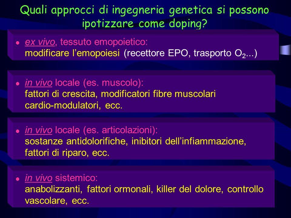 Esempi di approcci al doping genetico Ormone della crescita umano (hGH) Incrementata produzione di hGH Transfettazione in vivo: geni che producono hGH posti in uno speciale involucro proteico Utilizzati come spray da inalare nel sistema bronchiale Iniettati direttamente nel sangue
