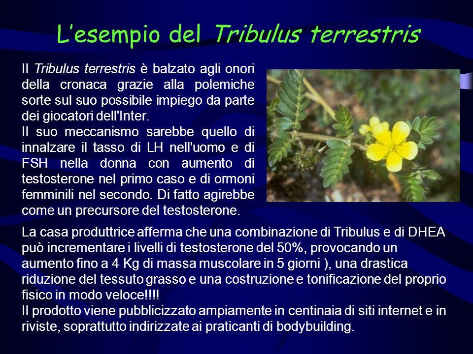 Il Tribulus rientra nei rimedi erboristici della medicina tradizionale.
