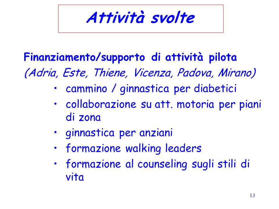 13 Attività svolte Finanziamento/supporto di attività pilota (Adria, Este, Thiene, Vicenza, Padova, Mirano) cammino / ginnastica per diabetici collabo