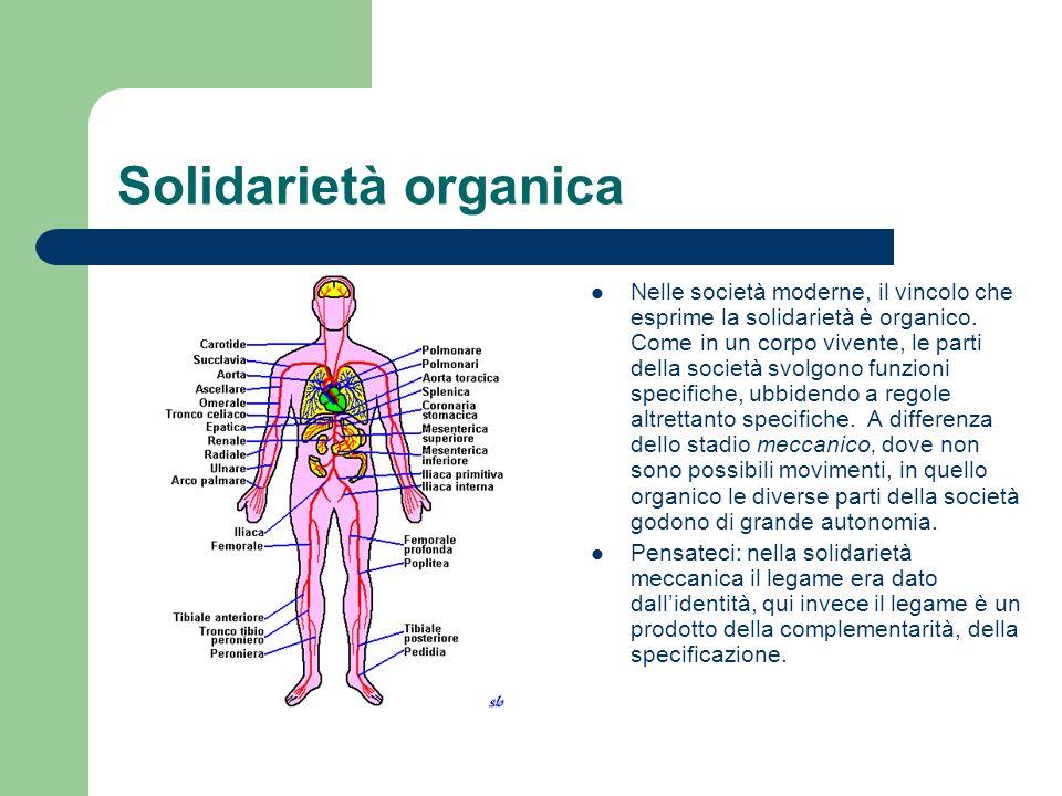 Solidarietà organica Nelle società moderne, il vincolo che esprime la solidarietà è organico. Come in un corpo vivente, le parti della società svolgon