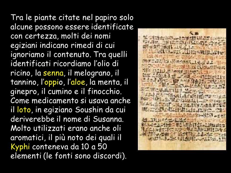 Anche gli antichi egizi conoscevano le virtù dei medicamenti e larte di somministrarli. Daltra parte si ritiene che la medicina egiziana, esercitata d