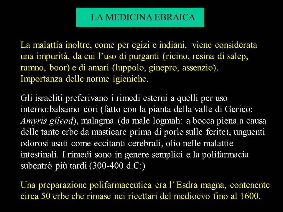 LA MEDICINA EBRAICA Il migliore dei medici andrà allinferno Talmud. Altissimus creavit de terra medicamenta et vir probus non abhorrevit ab illa Eccle