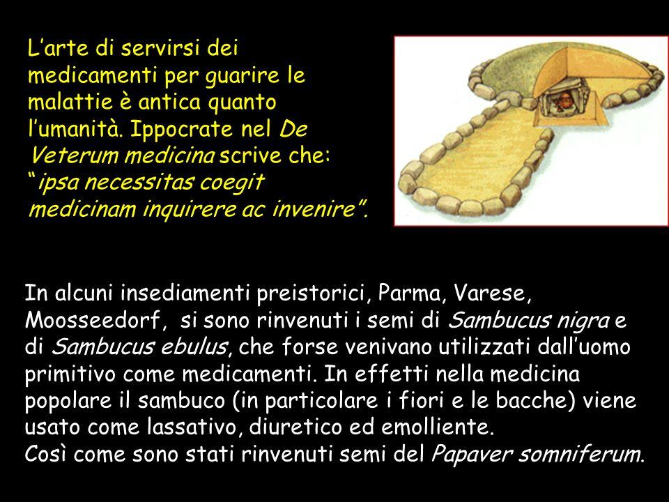 Larte di servirsi dei medicamenti per guarire le malattie è antica quanto lumanità.