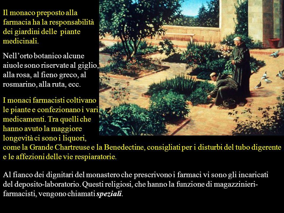 Un aspetto positivo va riconosciuto ai monasteri, dal VI fino al XII secolo, alcuni dotati di ospedali. I monaci curavano i malati utilizzando piante