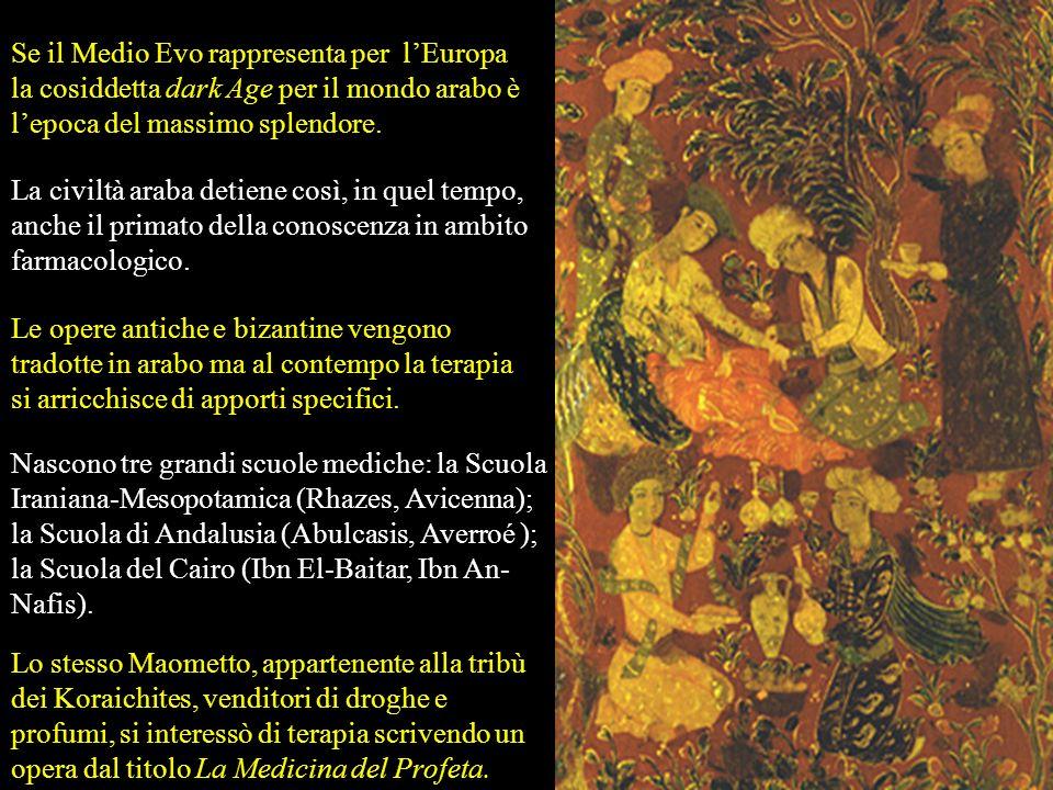 Cynoglossum officinale L. Cynoglossum officinalis Usata in preparazioni erboristiche per tosse, catarro, diarrea,