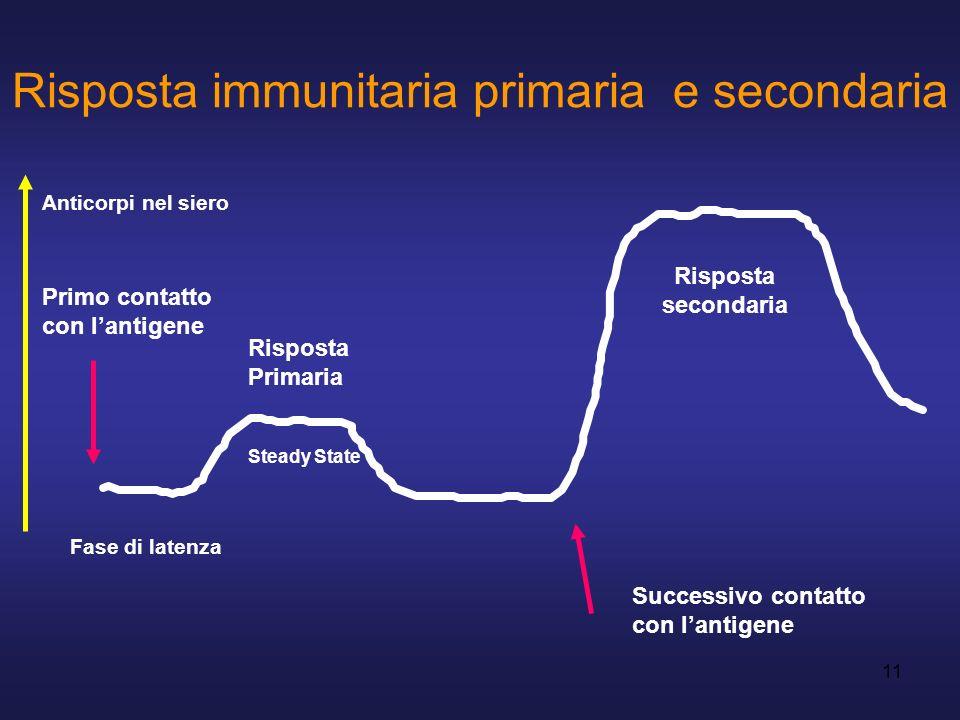 11 Risposta immunitaria primaria e secondaria Fase di latenza Steady State Successivo contatto con lantigene Risposta secondaria Primo contatto con la