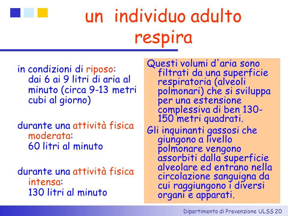 Dipartimento di Prevenzione ULSS 20 un individuo adulto respira in condizioni di riposo: dai 6 ai 9 litri di aria al minuto (circa 9-13 metri cubi al