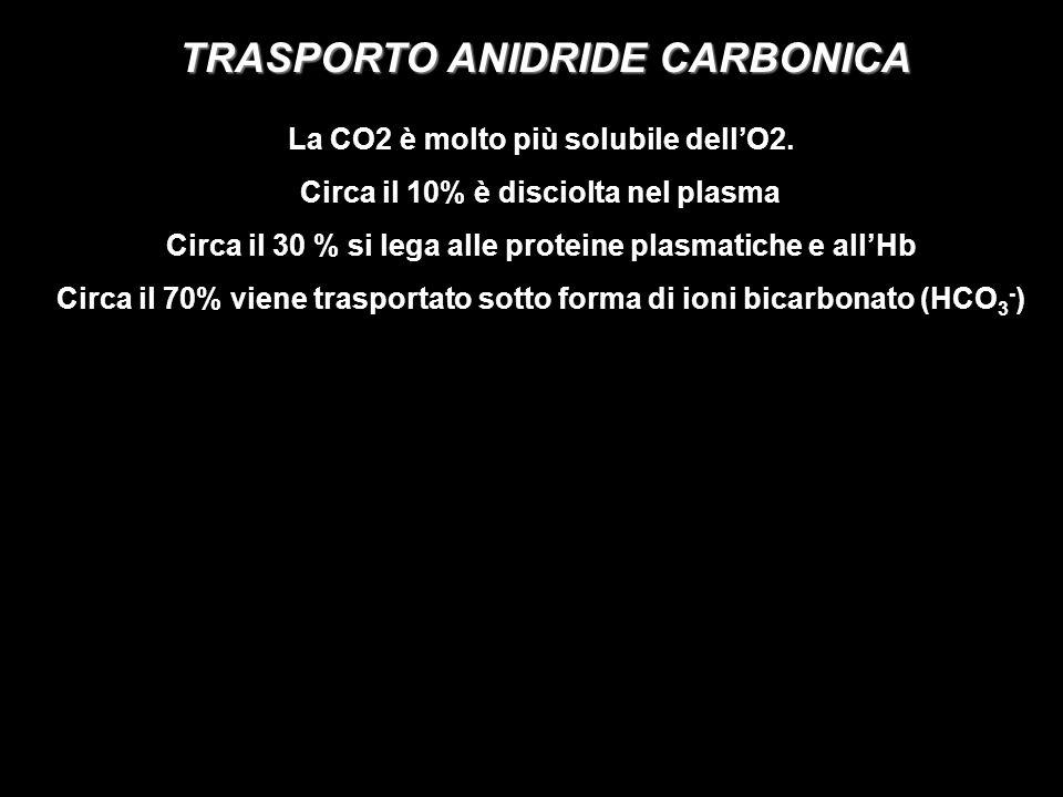 TRASPORTO ANIDRIDE CARBONICA La CO2 è molto più solubile dellO2.