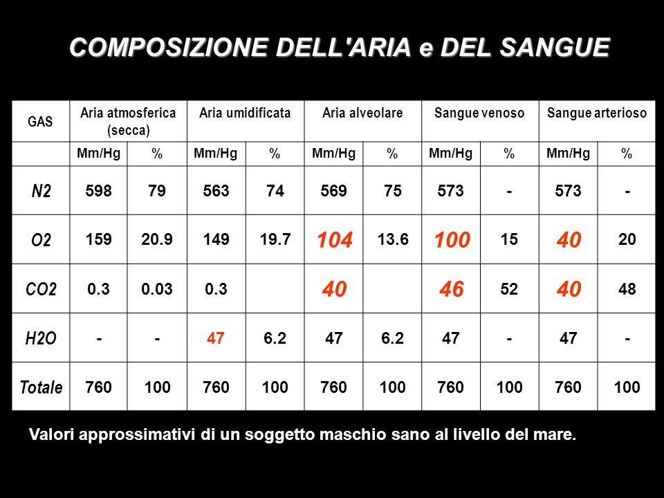 COMPOSIZIONE DELL ARIA e DEL SANGUE GAS Aria atmosferica (secca) Aria umidificataAria alveolareSangue venosoSangue arterioso Mm/Hg% % % % % N2 598795637456975573- - O2 15920.914919.7 104 13.6 100 15 40 20 CO2 0.30.030.3 4046 52 40 48 H2O --476.2476.247- - Totale 760100760100760100760100760100 Valori approssimativi di un soggetto maschio sano al livello del mare.