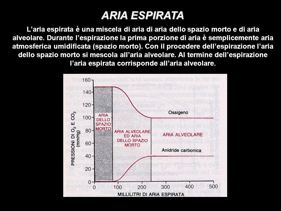 ARIA ESPIRATA Laria espirata è una miscela di aria di aria dello spazio morto e di aria alveolare.